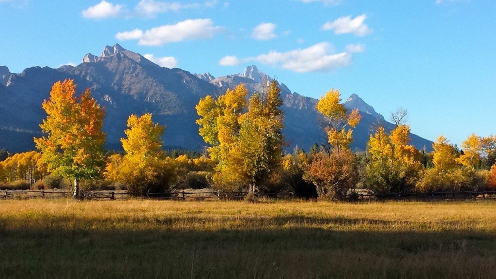 Fall from Teton